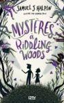 E-Book Mystères à Riddling Woods
