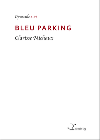 E-Book Bleu parking