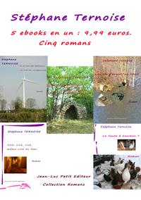 Livre numérique 5 ebooks en un : 9,99 euros. Cinq romans