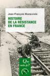 Livre numérique Histoire de la Résistance en France