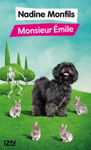 Livre numérique Monsieur Emile
