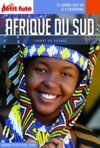 Electronic book AFRIQUE DU SUD 2020 Carnet Petit Futé