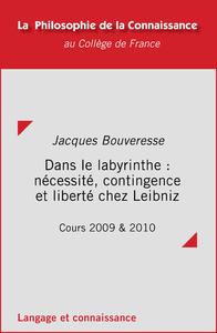 Livre numérique Dans le labyrinthe: nécessité, contingence et liberté chez Leibniz